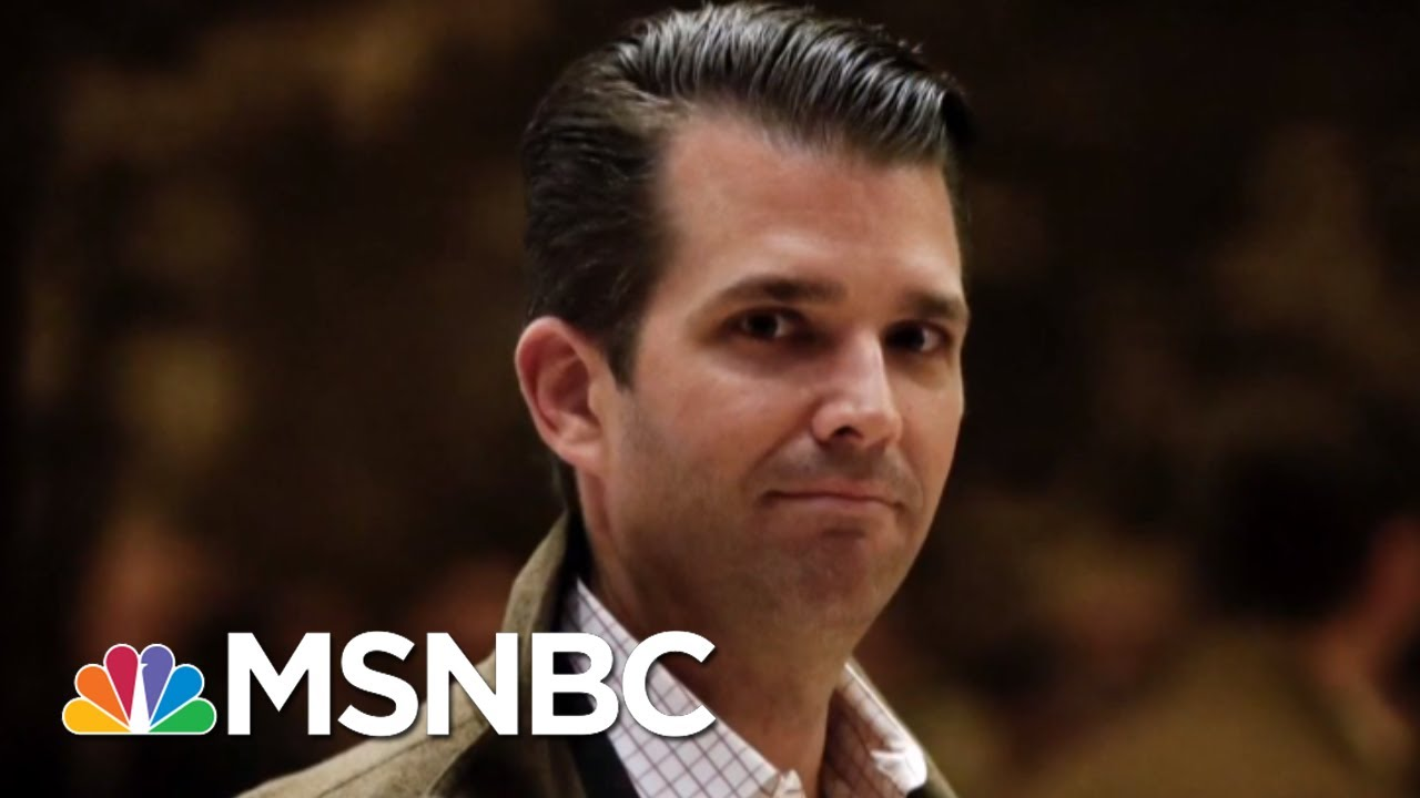 President-Donald-Trump-Worried-Donald-Trump-Jr.-In-Trouble-From-2016-Meeting